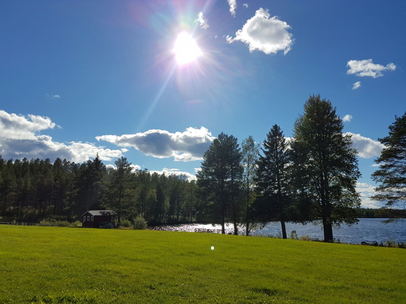 cabin-near-lale-and-trees-in-Sweden-Healing-Room
